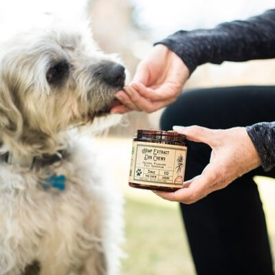 Cbd, Dog Treats, Dog Chews, Pet, Hemp, Hemp Extract