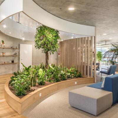 Biophilia in interior design