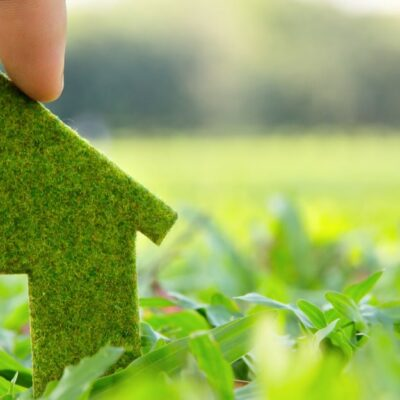 How To Make Your Home More Eco-Friendly
