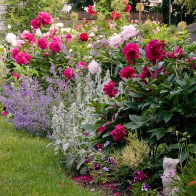 How to Keep Your Garden Looking Brand New